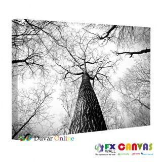 SB-100 Siyah Beyaz Tek Ağaç Kanvas Tablo