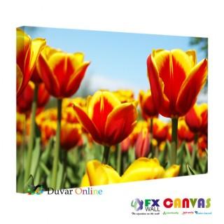 Floral Laleler Kanvas Tablo