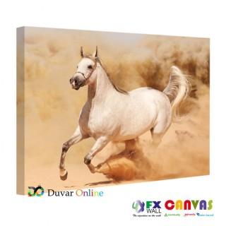 Beyaz At Koşarken Kanvas Tablo