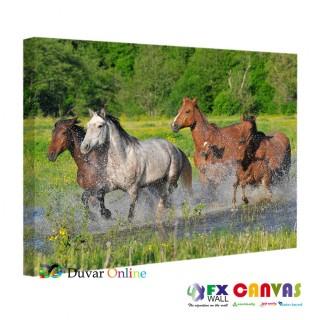 Atlar Sudan Geçerken Kanvas Tablo