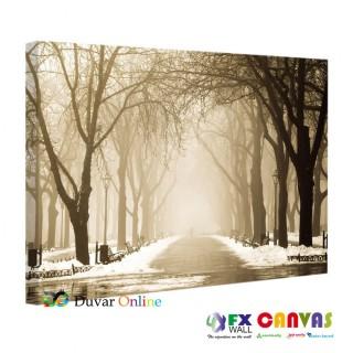 Kış Mevsimi, Park ve Ağaçlar Kanvas Tablo