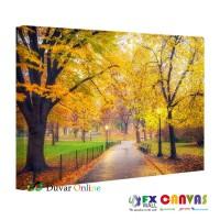 Sonbaharda Park ve Ağaçlar Kanvas Tablo