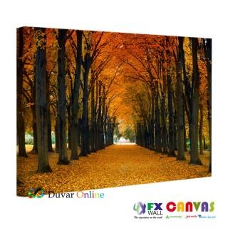 Yanyana Dizili Ağaçlar ve Sonbahar Kanvas Tablo