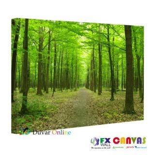Orman İçinde Yol Kanvas Tablo