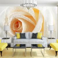 3D Sarı -Beyaz gül Duvar Posteri