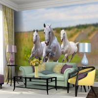 Koşan Beyaz Atlar - Duvar Posteri