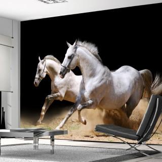 Asil Atlar 3D Duvar Kağıdı