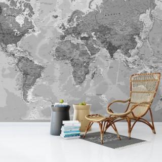 Dünya Haritası Duvar Posteri Gri