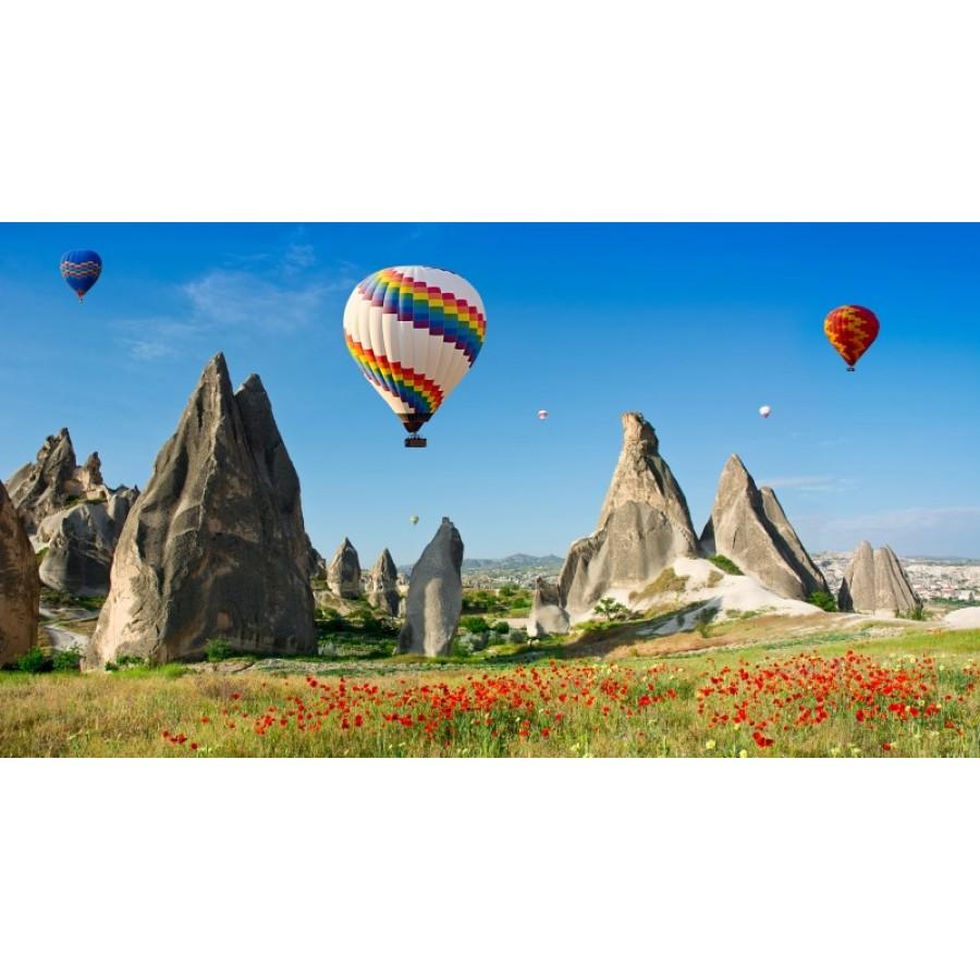 N 1301 Ozel Tasarim Renkli Sicak Hava Balonlar Duvar Kagidi