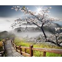 Sonsuz Merdiven Doğa Duvar Posteri