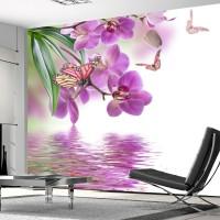 Orkide Kelebek Duvar Posteri