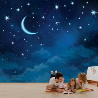 Gece Gökyüzü ve Ay Manzaralı Duvar Posteri