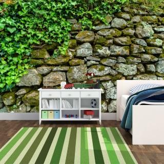 Taş Duvar Üzerinde Yeşil Yapraklar Duvar Posteri