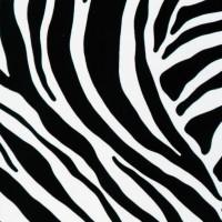 GEKKOFİX FOLYO Zebra
